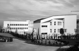 Liceo Artistico nell'area parco di Sant'Ilario_1998-2004, Raimondo Consolante, Giovanni Consolante