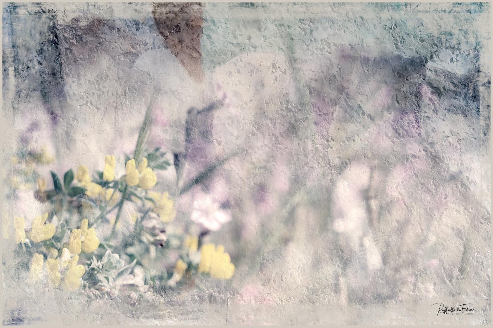 SpringFlower_3